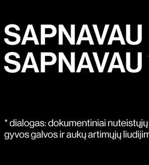 Valstybinis jaunimo teatras: SAPNAVAU SAPNAVAU rež. Kamilė Gudmonaitė
