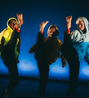 Šeiko Dance Company. The Invisibles